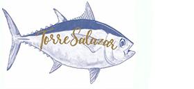logo_torresalazar