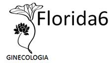 logo_florida