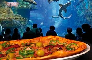 Menú en La Piazzetta de Gros + Aquarium
