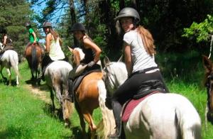 Clases de equitación en Valdegovía