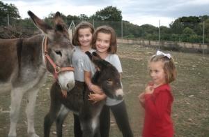 Experiencia en la granja para niños
