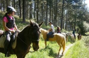 Rutas a caballo para 2 o 4 personas