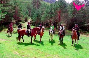 Ruta a caballo de más de 1 h.