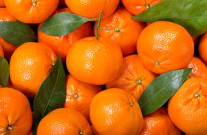 Exquisita caja de mandarinas valencianas de 15 Kg